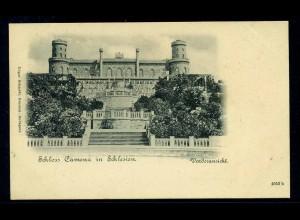 AK Schloss CAMENZ in Schlesien siehe Beschreibung (103591)