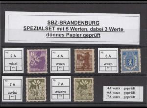 SBZ 1945 Kleines Lot postfrisch (213208)