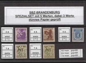 SBZ 1945 Kleines Lot postfrisch (213209)